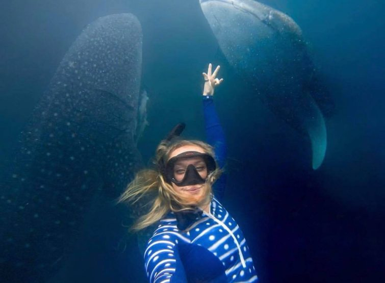 whale shark cancun lds tours
